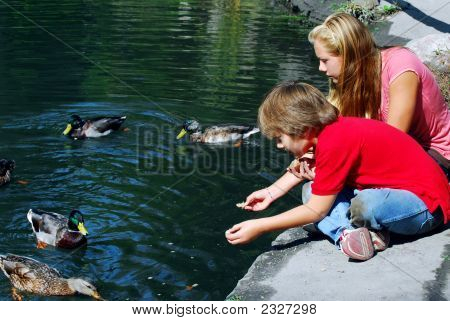 Children feeding ducks at the pond in a park poster