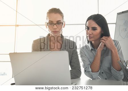 Portrait Of Two Busy Women Focused On Computer Screen While Sitting In Boardroom