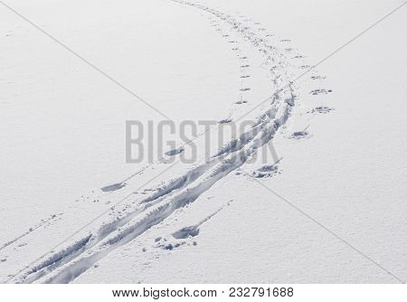 Cross-country Track In Newly Fallen Snow. Bright Sunshine In The Landscape.