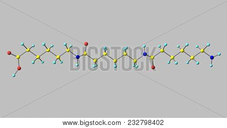 Nylon Is A Generic Designation For A Family Of Synthetic Polymers, Based On Aliphatic Or Semi-aromat