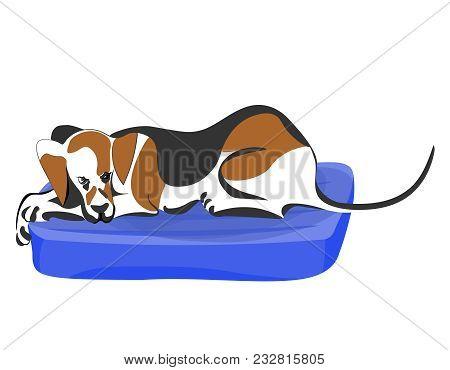 Hunter Dog (harrier) Lying Lazy On Blue Mattress. Vector Color Cartoon Image.