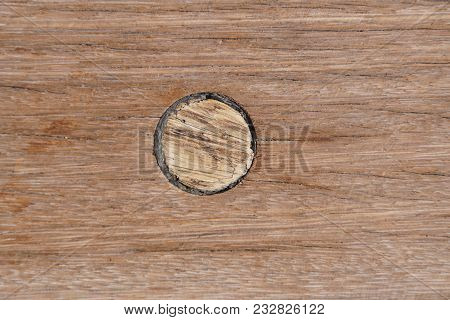 Deck On The Ship. Wood Texture Valuable Species Of Wood Material Cork Stopper