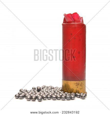 Lead Shot And Gun Shell Isolated On White