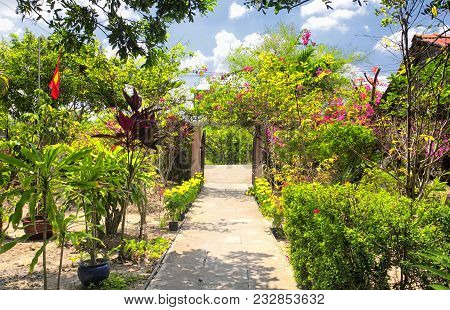 A Walkway Through A Garden At The Nam Thanh Homestay On Vinh Long In South Vietnam On A Sunny Summer