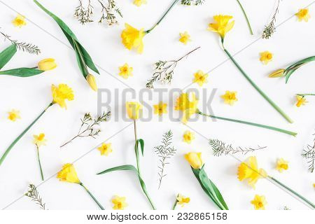 Flowers Composition. Spring Narcissus And Tulip Flowers On White Background. Flat Lay, Top View
