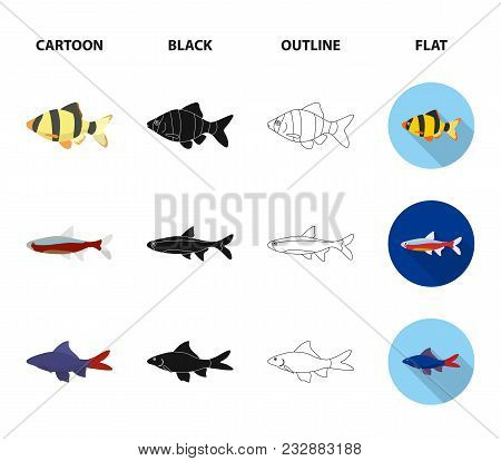Angelfish, Common, Barbus, Neon.fish Set Collection Icons In Cartoon, Black, Outline, Flat Style Vec