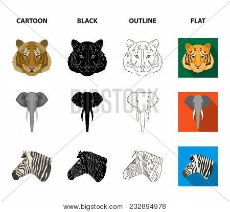 Tiger, Lion, Elephant, Zebra, Realistic Animals Set Collection Icons In Cartoon, Black, Outline, Fla