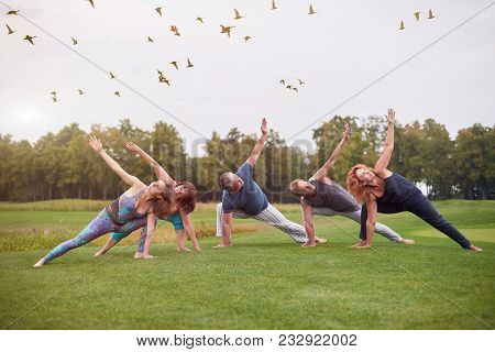Group Sport Physical Exercise Outdoor In The Park. People Making Stretching Yoga Gymnastics On The L