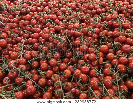 raw tomatoes, a lot of tomatoes, sweet small tomatoes, red fresh tomatoes, farmers market table full of tomatoes