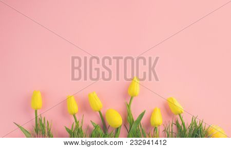 Beautiful bright vivid yellow spring blooming tulip flowers and fresh grass over pink background. Beauty Easter backdrop with painted eggs, copy space for text Holiday spring wallpaper design Top view
