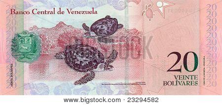 20 Bolivares