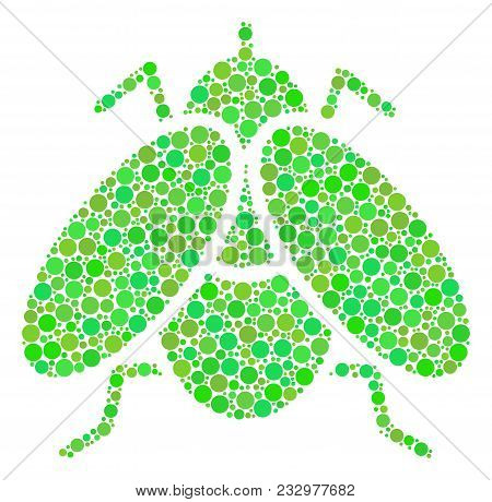 Fly Insect Mosaic Of Circle Elements In Various Sizes And Fresh Green Color Hues. Vector Circle Elem