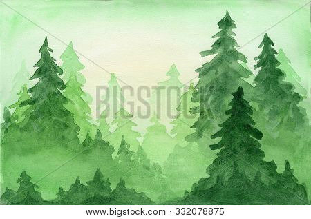 Green Beautiful Watercolor Background With Coniferous Fir Forest In Sun Lights. Mysterious Pine Tree