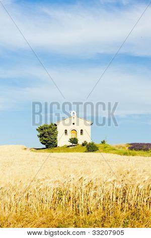 chapel with grain field, Plateau de Valensole, Provence, France