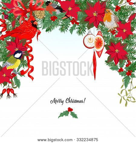 Cardinal Bird And Christmas Wreath Of Spruce, Pine, Poinsettia Template For Card, Banner, Gift Vouch