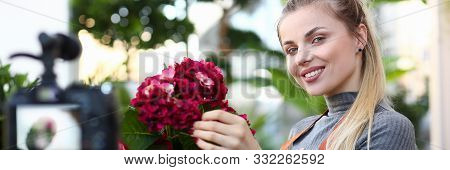 Smiling Blogger Touching Red Hydrangea Photo. Florist Woman Recording Blooming Flower In Flowerpot O
