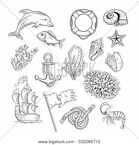 Marine Themed Black And White Illustrations Set. Sea Flora, Fauna And Sailing Attributes Hand Drawn