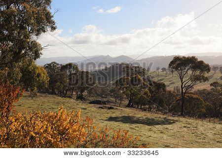 Autumn Colours In Countryside Tablelands Near Oberon. Nsw. Australia.