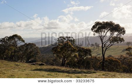 Autumn In Countryside Tablelands Near Oberon. Nsw. Australia.