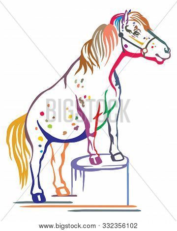 Colorful Decorative Portrait Of Pony Standing In Profile On A Stump, Training Pony. Vector Isolated