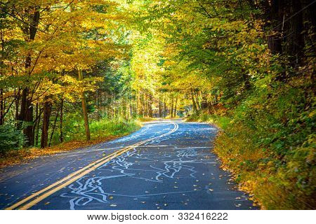 Driving Down Colorful Tree-lined Roads With Leaves Scattered On The Ground In Massachusetts In The F