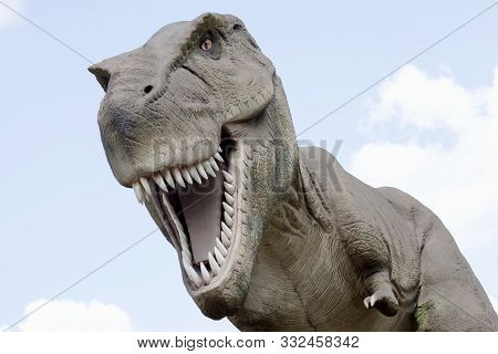 Animal Portrait Of Dangerous Extinct Tyrannosaurus Rex Dinosaur On Sky Background.