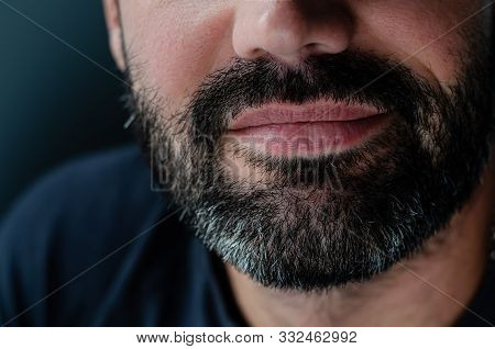 Cropped Portrait Of A Smiling Bearded Brunette Man. Close Up