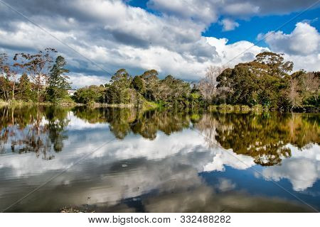 Mirror Image Tree And Cloud Reflections On The Water At Te Puia Springs In Tokomaru Bay New Zealand