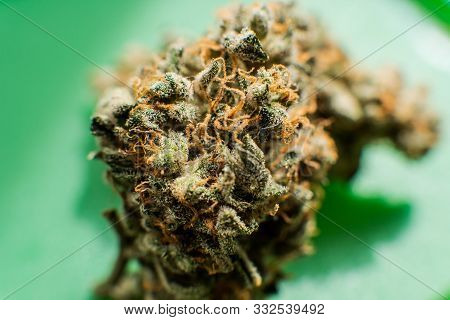 Indica Vs. Sativa: What's The Difference Between Cannabis Types
