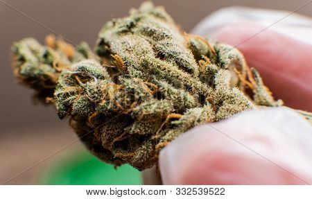 The 10 Most Popular Cannabis Strains.the Best Cannabis Strains For Focus And Add/adhd. Terpenes In I