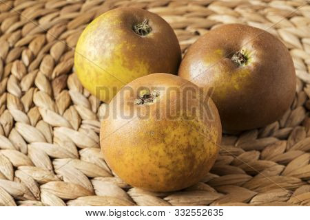 Three Egremont Russet Apples On A Banana Leaf Mat, In Natural Light.