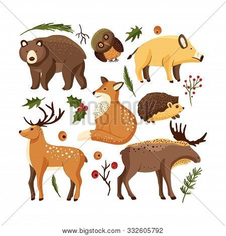 Hand Drawn Forest Animal Vector Set In A Flat Style. Woodland Cartoon Sticker Icon Funny Collection