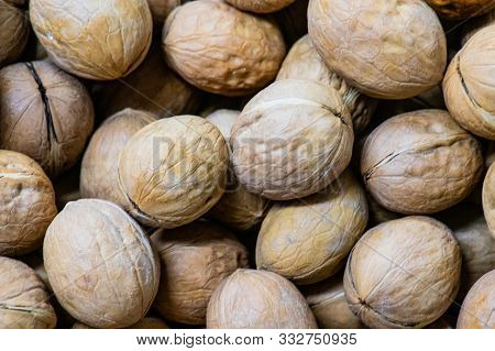 Healing Mature Walnuts To Nourish Your Brain. Tough And Wrinkled Shell, Beautifully Stacking