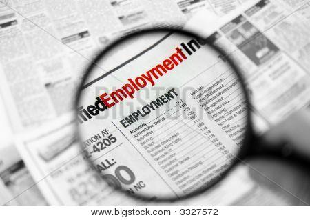 Job Hunt 2