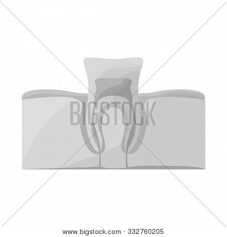 Vector Design Of Tooth And Gingiva Icon. Web Element Of Tooth And Clean Stock Vector Illustration.