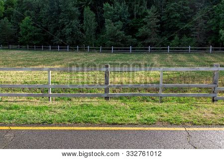 Artiodactyla Pasture Fenced By A Wooden Fence On The Side Of The Road Near An Asphalt Road With Yell