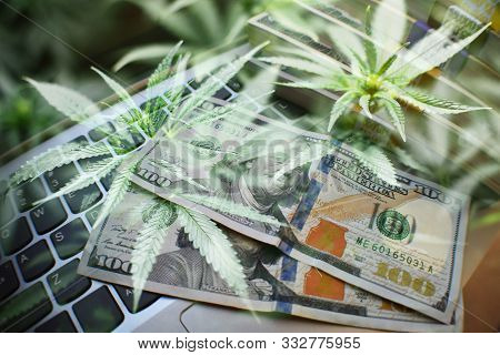 Cannabis Marijuana Industry Concept High Quality Stock Photo