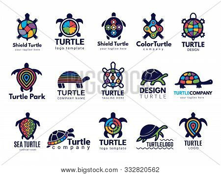 Turtle Symbols. Business Logo Wild Sea Animals Tortoise Vector Colored Stylized Pictures Collection.