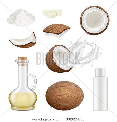 Coconut Realistic. Exotic Palm Tree Cut Tropical Food Cocos Drink Vector Illustrations. Milk Drink,