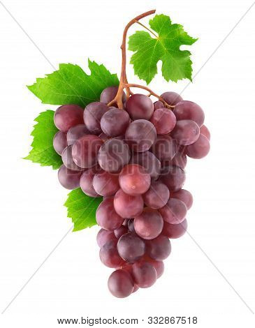 Isolated Grapes. Bunch Of Red Grapes On A Branch Isolated On White Background With Clipping Path