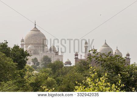 Famous Taj Mahal In Agra, India. View From Taj Nature Walk.