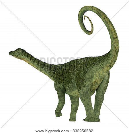 Saltasaurus Dinosaur Tail 3d Illustration - Saltasaurus Was A Herbivorous Sauropod Dinosaur That Liv