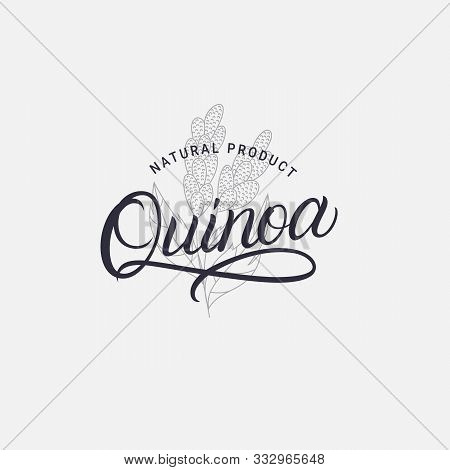Quinoa Hand Written Lettering Logo, Label, Badge, Sign, Emblem Template Design. Template For Healthy