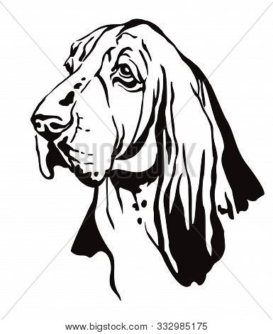Decorative Contour Outline Portrait Of Dog Basset Hound Looking In Profile, Vector Illustration In B