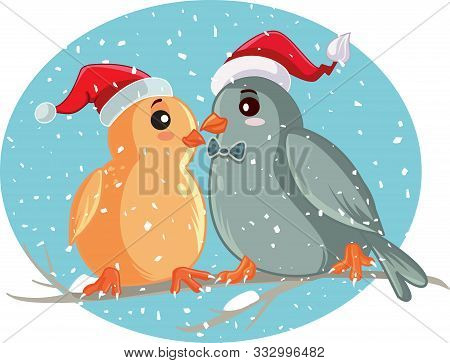 Christmas Birds Sitting On A Tree Branch