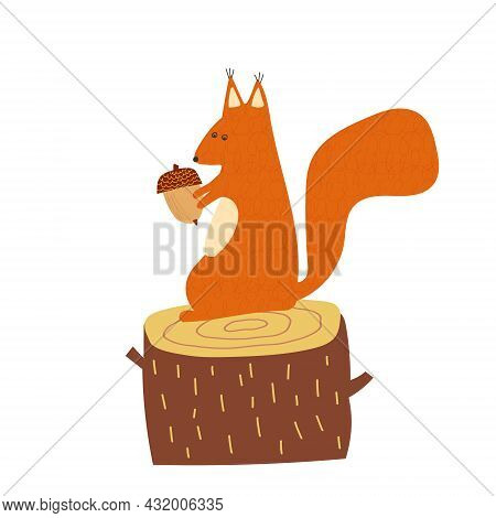 Hand Drawn Cartoon Vector Illustration Set Of Cute Squirrel Sitting On The Stump With Acorn. Isolate
