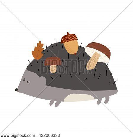 Hand Drawn Cartoon Vector Illustration Set Of Cute Hedgehog Carrying His Food Mashroom, Leaf, Acorn.