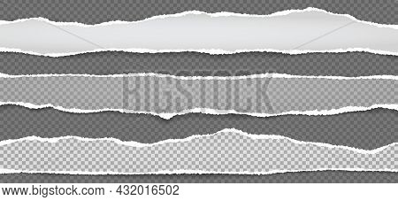 Torn, Ripped White And Grey Paper Strips With Soft Shadow Are On Squared Background For Text. Vector