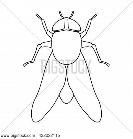 Parasites Fly Vector Icon.outline Vector Icon Isolated On White Background Parasites.