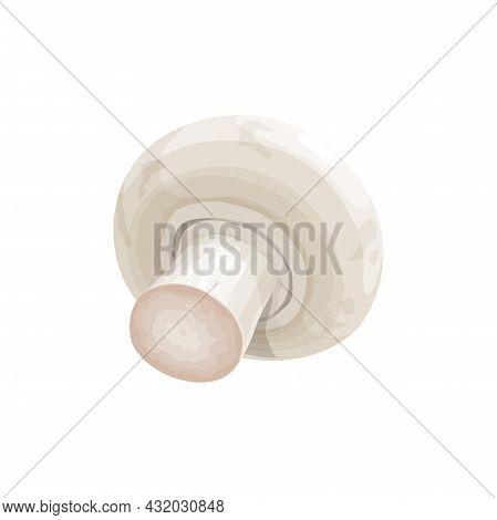 Cultivated Table Champignon Cremini Or Crimini In 3d Design Isolated Icon. Vector Fungi White Button